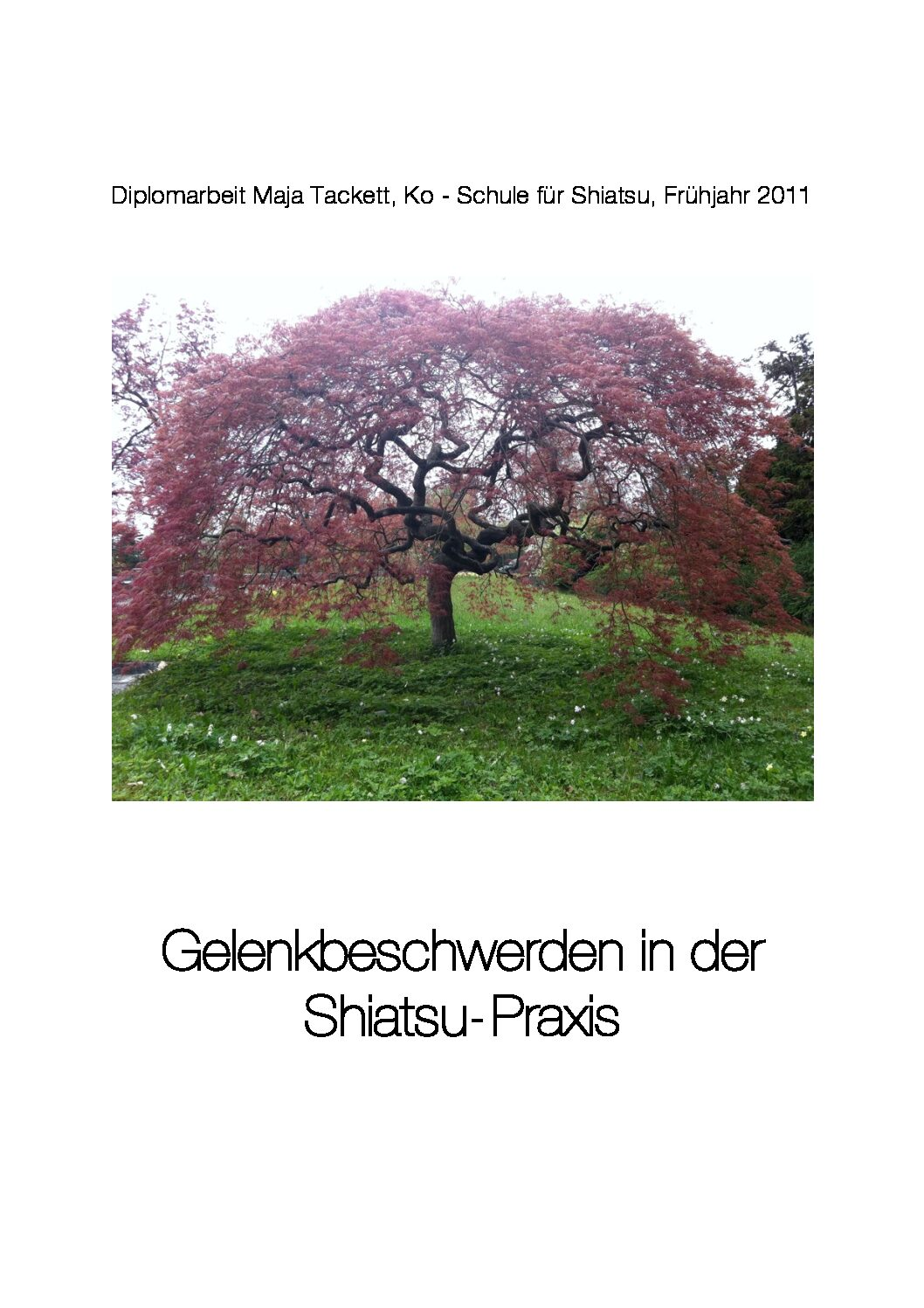 Gelenkbeschwerden in der Shiatsu-Praxis (2011, Maja Tackett)